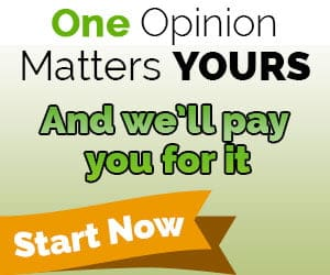 oneopinion logo