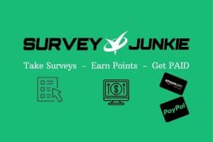 survey junkie review